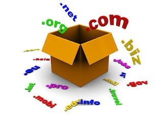 5 Langkah Mendapatkan Domain Gratis