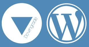 downgrade wordpress